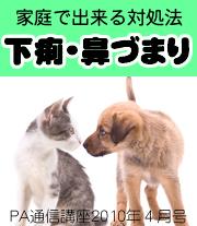 2010年4月号「家庭で出来る!〜下痢と鼻づまりの対処法〜」