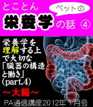 2012年1月号「とことんペットの栄養学の話〜臓器の構造と働き(その4)大腸」