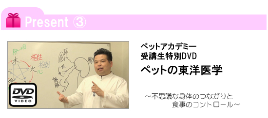 ペットアカデミー入学キャンペーン3