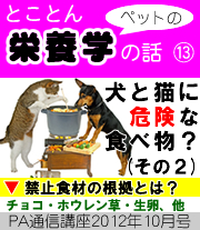 2012年10月号「犬と猫に危険な食べ物?(その2)禁止食材の根拠は?〜 チョコレート・ホウレン草・生卵・ミネラルウォーター、ほか 〜」