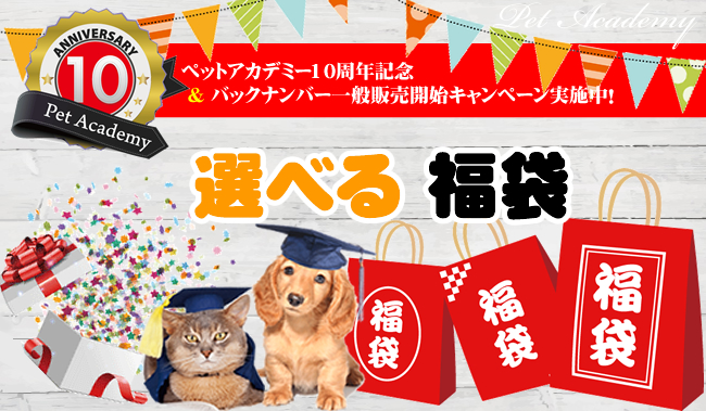 ペットアカデミー10周  年記念「選べる福袋」