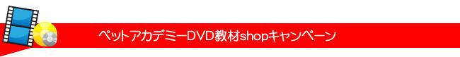 ペットアカデミーDVD教材Webショップキャンペーン実施中!