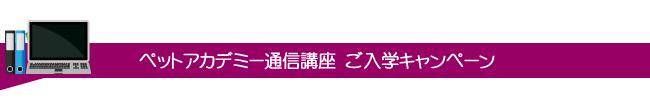 ペットアカデミー通信講座 ご入学キャンペーン実施中!