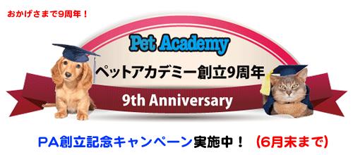 ペットアカデミー創立9周年記念キャンペーン実施中!