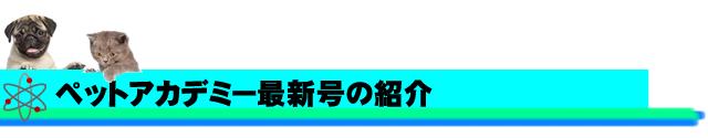 ペットアカデミー通信講座(DVD・オンライン)最新号紹介