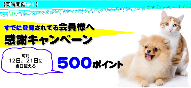ペットアカデミー会員キャンペーン実施中!わんにゃんデー!わんにゃんDay!