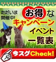 ペットアカデミー お得なキャンペーン&イベント一覧表
