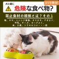 犬と猫に危険な食べ物?1
